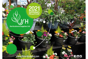 Spring 2021 Brochure Out Now!
