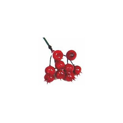 BERRY CLUSTER ON A WIRE
