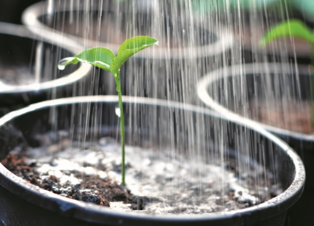How to save water in the Horticultural Industry