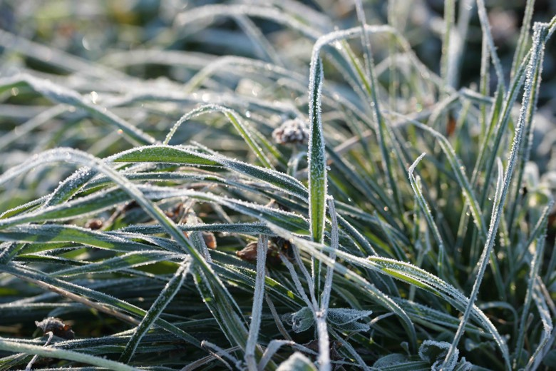 Help your customers stay ahead of falling temperatures