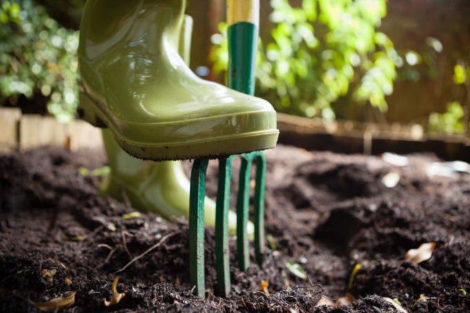 Help your customers get back into the garden this January   JFH Horticultural Supplies